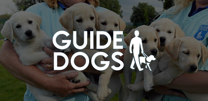 Guide Dog's On-Site Remarketing Creative