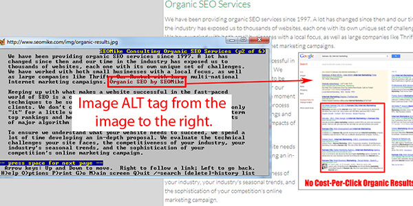 ALT tag Image
